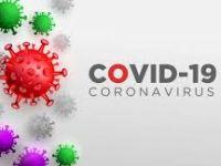 Overzicht Covid-Steunmaatregelingen